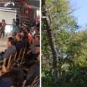 Vida no Sul vai a Seberi para conhecer de perto o projeto Alimergia